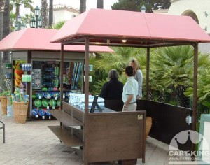 Outdoor Booth Kiosk with Lighting and Canopy Roof